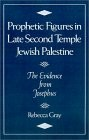 Prophetic Figures in Late Second Temple Jewish Palestine, The Evidence from Josephus